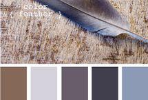 Colour / by Nikoletta Benkő