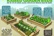 Garden Ideas / by Kristin Praeuner