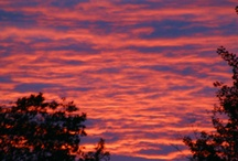 Beautiful Sunsets / by Patricia Parker