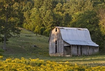 Old Barns / by Lou Fancher-Steele