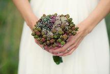 wedding inspiration / by Mary Lambkin