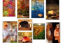 Autumn Dance / by Tana
