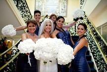 Wedding ideas / by Laura Lynne Photography