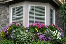 window boxes / by Blossom