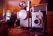 [ Collection ] / Coleção / by Luciana Martinez