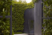 landscaping - modern / by Abeo Design