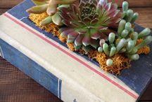 DIYs / by Fleur Decor