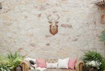 Lounge / by Sweet Emilia Jane