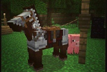 Minecraft! :D / by Glaceon Girl