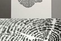 Art & Design / by Social Experiment