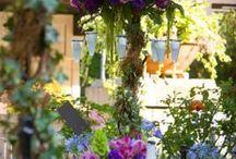 Flowers ideas for future weddings  / by Erin Bond