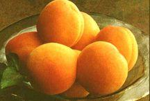 Apricot / by Lynnette Thramer