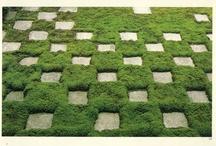 Green Garden & trees / by Noriko Kitahara