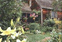 Little Cottage in the Woods... / by Sharon Stinson