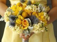 Wedding Ideas / by Shannon Steenhoek