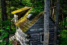 Abandoned Beauty / by Lindis Russell