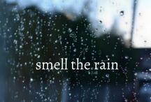 Do you like the rain? / by Ruthann Baumbarger