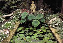 Gardens / Garden Design, Landscaping / by Pamela Goode