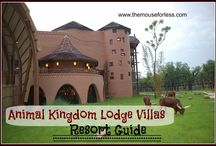 Disney's Animal Kingdom Lodge Villas / by The Magic For Less Travel - Specializing in Disney and Universal Vacations
