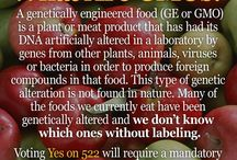 Gluten, Toxic Chemicals and GMO Info / by BonMeMe