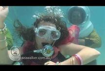 Travel Videos / by Gadling