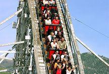 Roller Coaster FUN / by Marsha Hafer