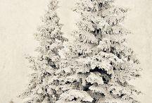 Winter / by Nancy Korpela
