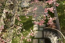Outdoor spaces / by Ann Favot