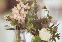 Flowers for Annie / by Alison Mazurek