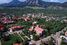 Campus Images / by Fan Gear Unlimited