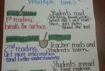 Anchor Charts for Teachers / by Marlena Sotelo