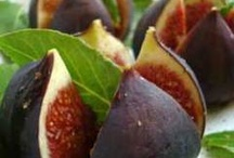 figs  / by Mary Vella