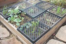 gardening healthy / by Scott Parrott