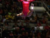 Gymnastics / Amazing flexibility, grace & balance / by Jace Ealden