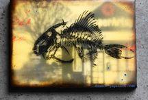 my encaustic / by France Papillon