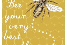 it's the Bee's Knees! / by Diane Miller | AnExtraordinaryDay