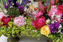 preserving flowers / by Debbie Grant