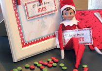 Elf on the shelf / by Katrina Scheidegger