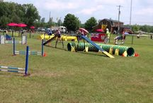 Themed and Event weekends / by Toronto North KOA