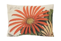 Pillow Power / by Boxwoods Fine Furnishings
