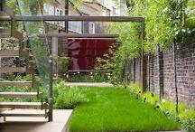 Garden / by Jon Kell