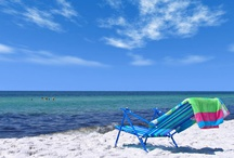 Sanibel Island Beaches / by Island Inn