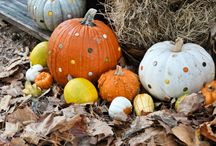 Fall...my favorite season of all! / by Megan Beecher