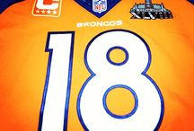 Broncos Fanatic / by Carolyn Hutson