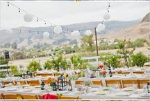 Wedding Ideas / by Boo Dixon