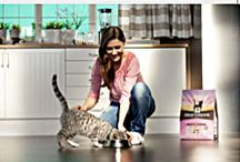 Saving Money on Pet Supplies / by DogTipper.com