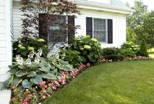 Landscaping Ideas / by LuAnne Harley
