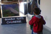 """Mostri di Belle Speranze / Hopeful Monsters / Festival of Science in Genoa, 2013: the theme, this year, is """"Beauty"""". We decided to tell about it through myths and legends, but also marine biology and anthropology: because we evolved as a chimera! / by Moreno Tiziani"""