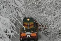 Snow,snow,snow  / by Dave Eaker