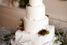 Wow what a wedding cake! / by Cindy Harvey